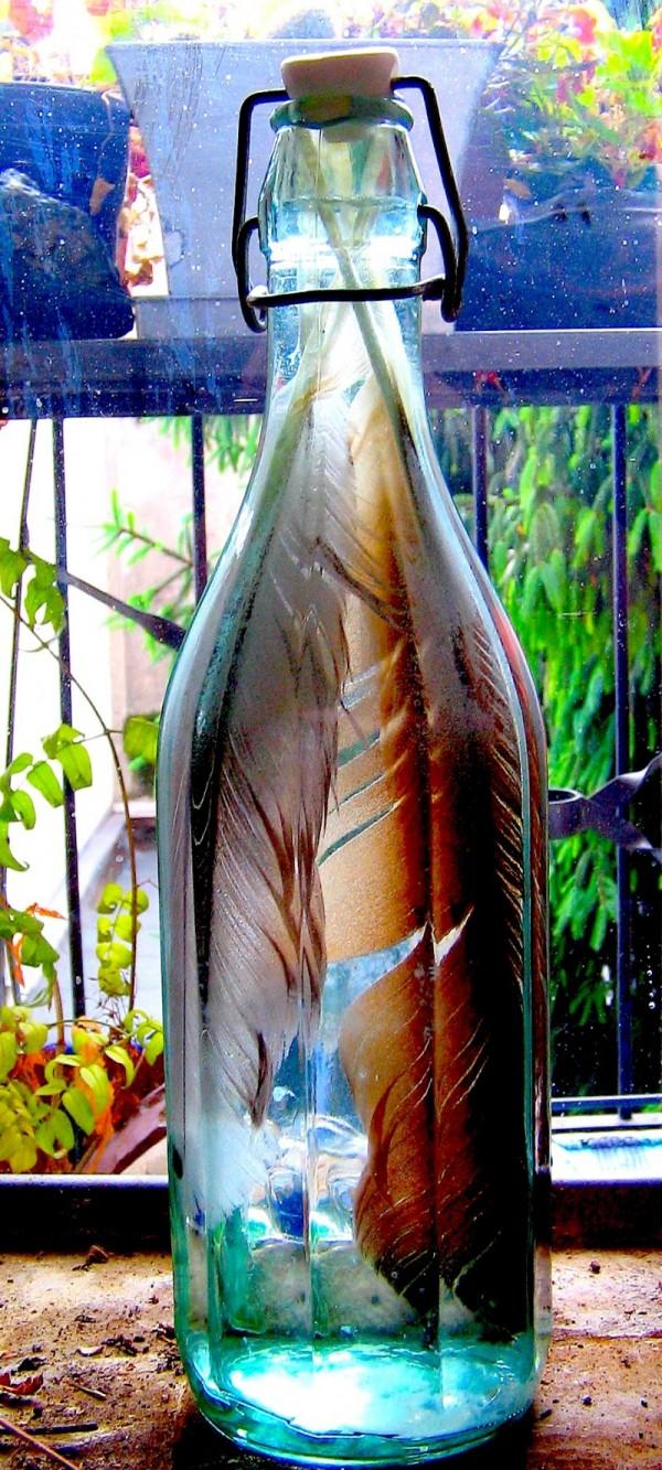 Bottled Feathers/Rainwashed Window