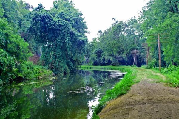 Lehigh Canal