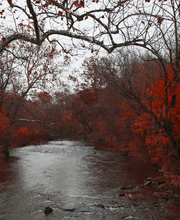 Along the Bushkill creek/3