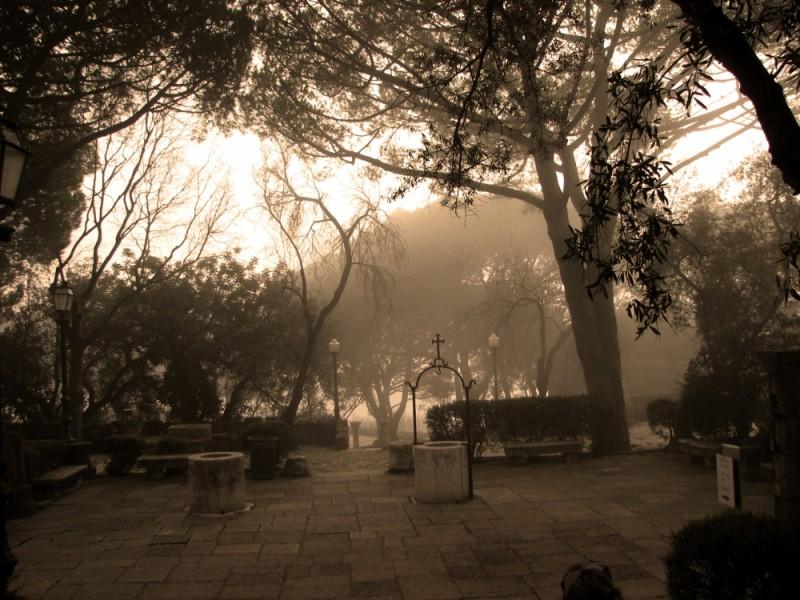 mist in lisboa's alcazar