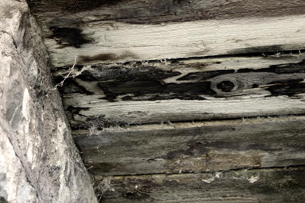 spider webs under wooden planks