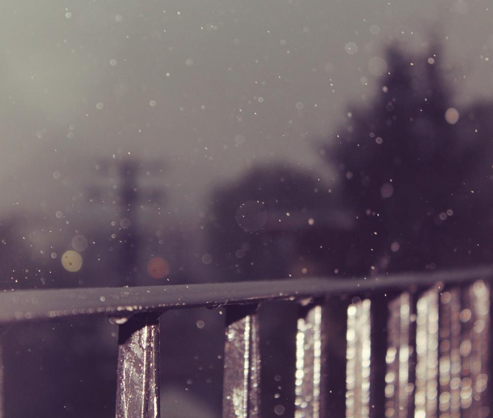rain drops in the city