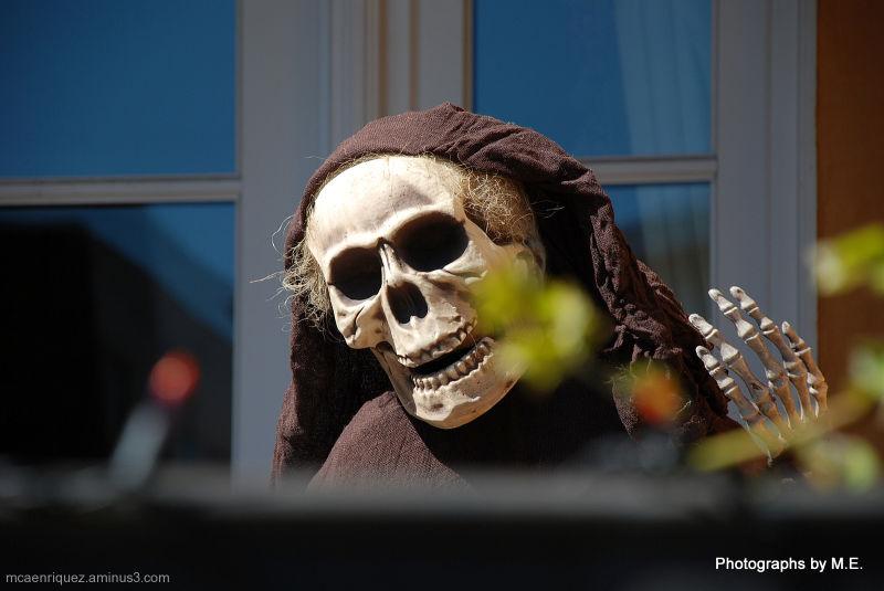 skull, mcaenriquez, cara macias