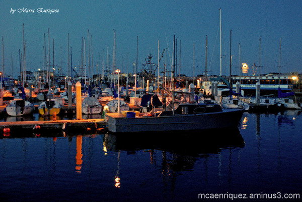 boats, monterey, fisherman's wharf