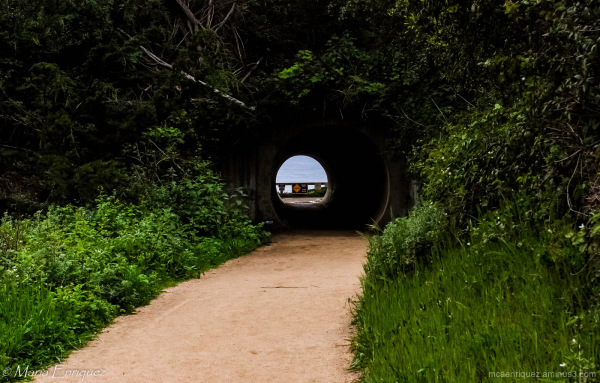 Safety, tunnel, caution, julia pfeiffer burns park