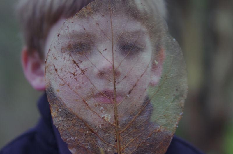 Leaf Portrait
