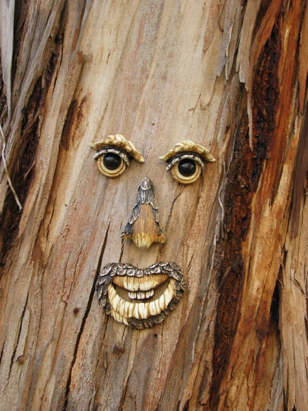 Face in a Tree