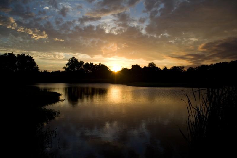 Uruguayo Pond