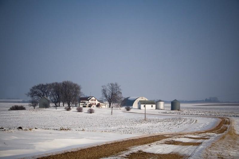 Living Land, Minnesota Winter