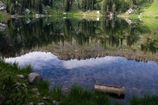 Targhee Forest Lake