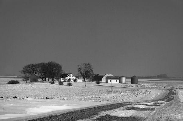 Living Land, Minnesota Winter II