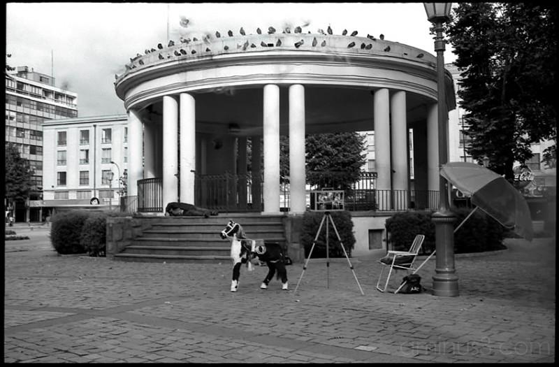 Plaza, Square