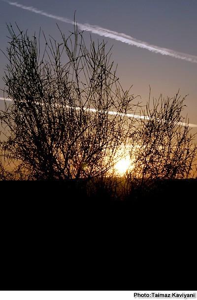 Appearance- Sun Rise in Desert