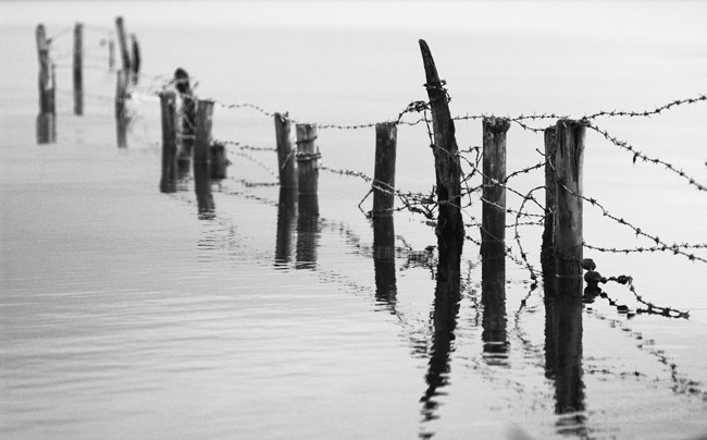 water fencing