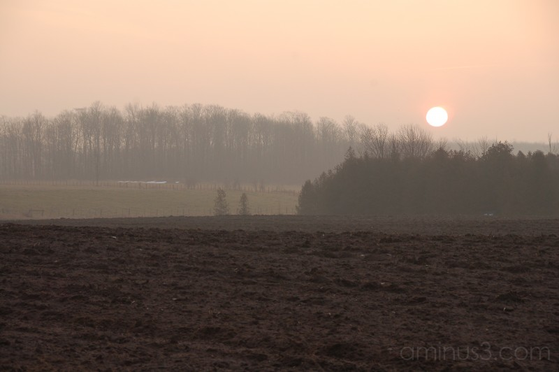 'December Mist'