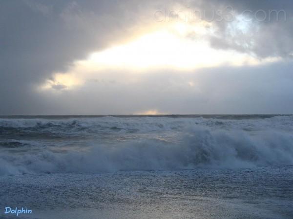 The sea-storm I