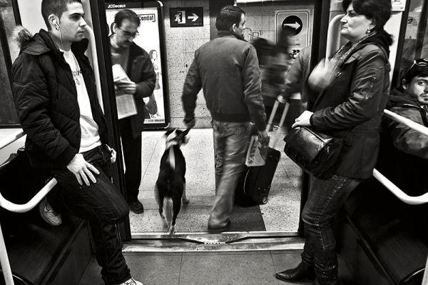 Metro line, Barcelona 2008.