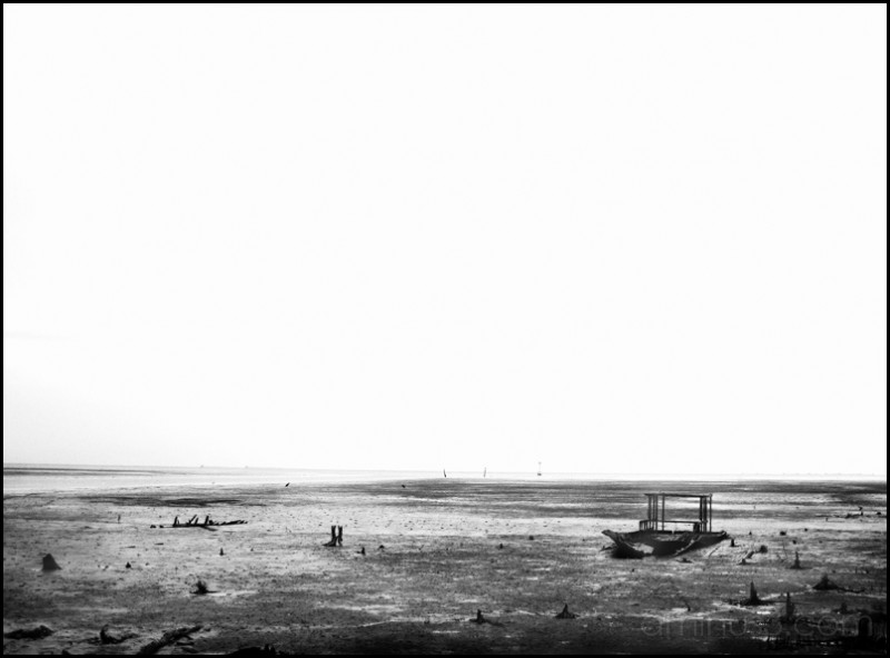 This Desolation