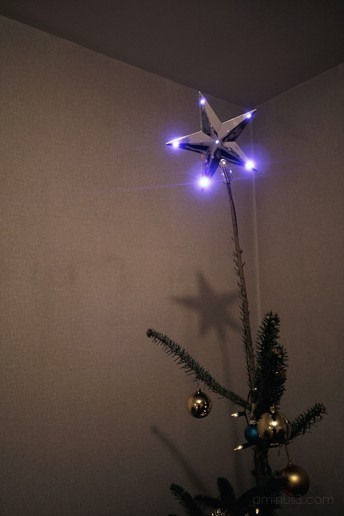 Christmas tree Noel Sapin