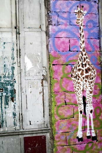 Africa Paris Girafe