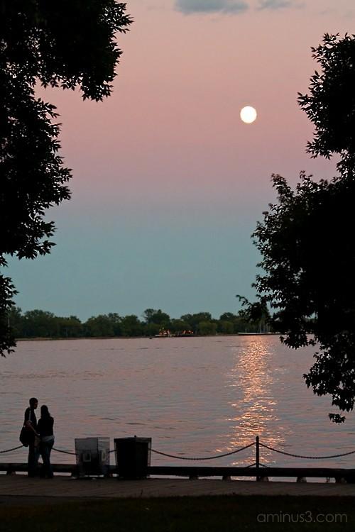 Moon and the purple sky