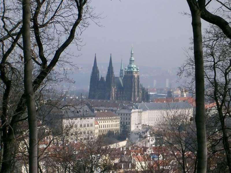 Prague castle through the trees