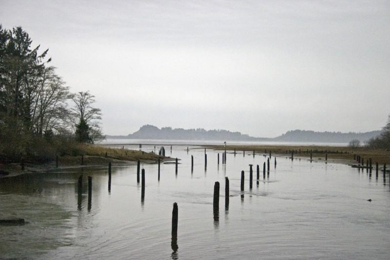Banks of the Columbia river, Washington