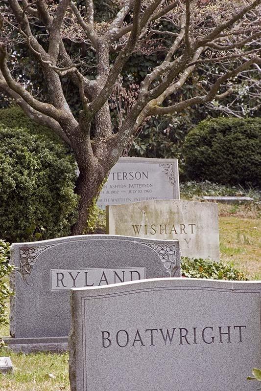 Headstones and tree
