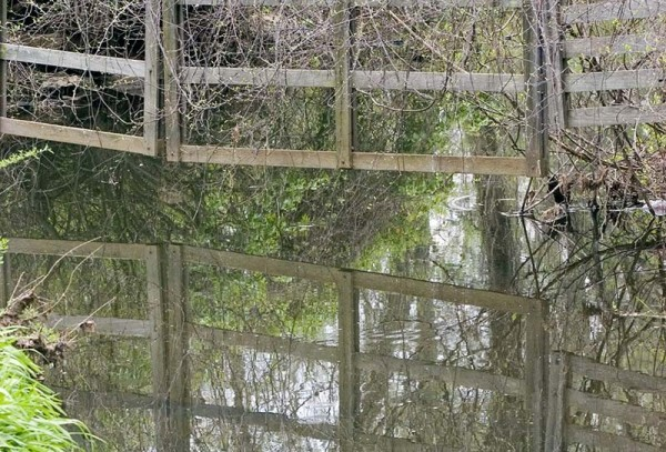Reflection of fence
