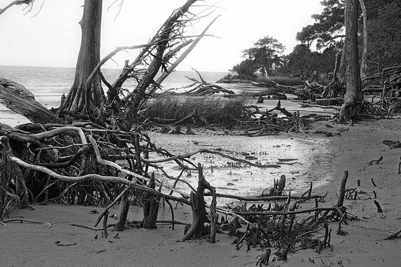 Low tide on Currituck Sound