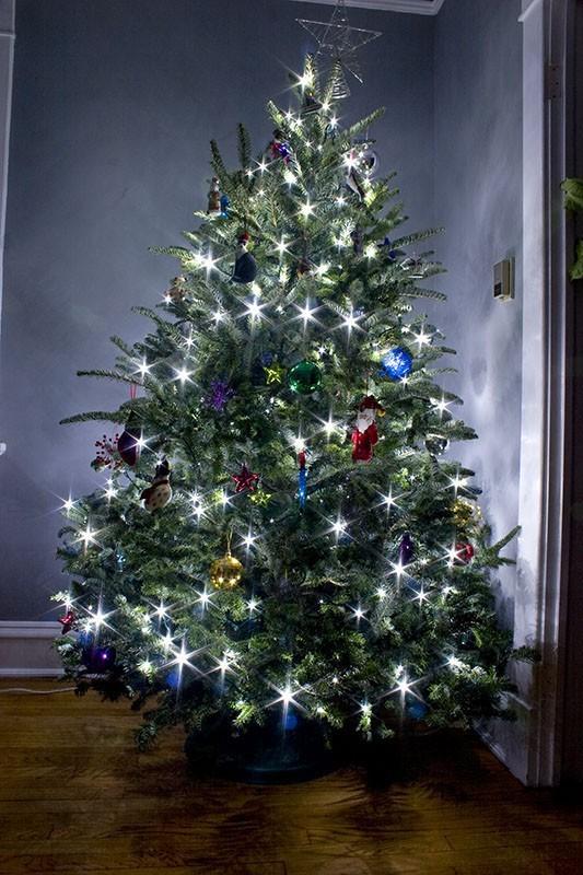 Merry Christmas 2007