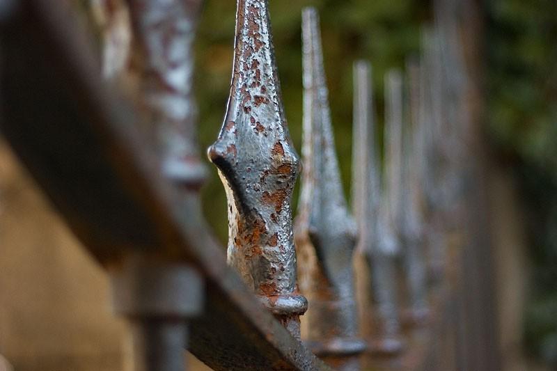 Rusty fence spike
