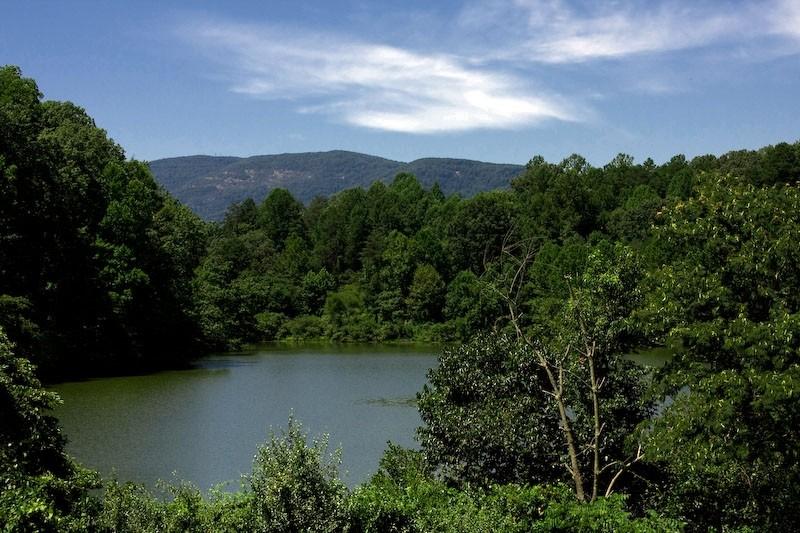 Lake Albemarle