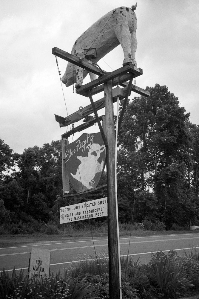 Blue Ridge Pig sign