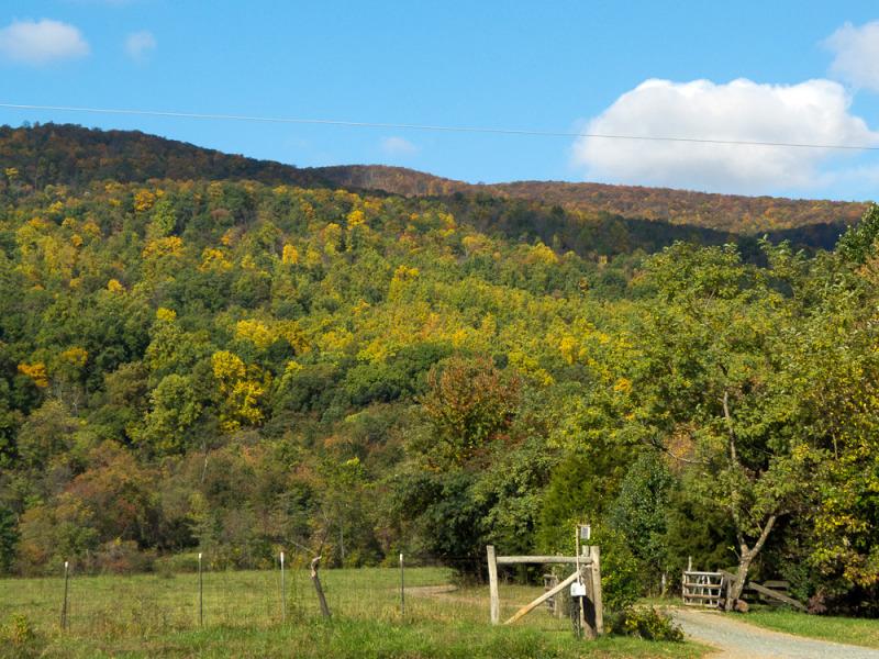 Fall mountains, Crozet, VA
