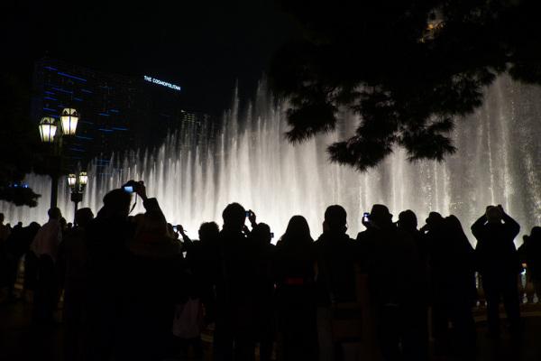 Fountain paparazzi