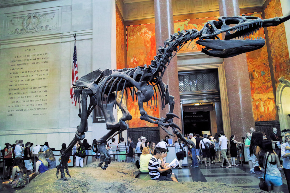 american museum of natural history nyc new york