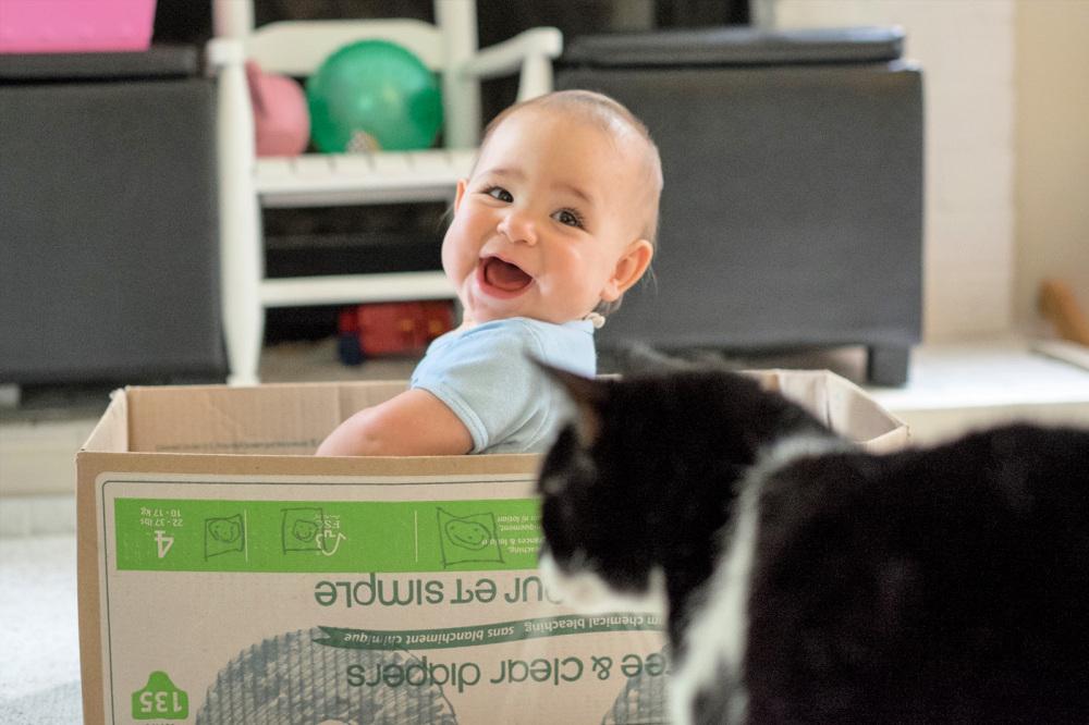 Boxcar baby
