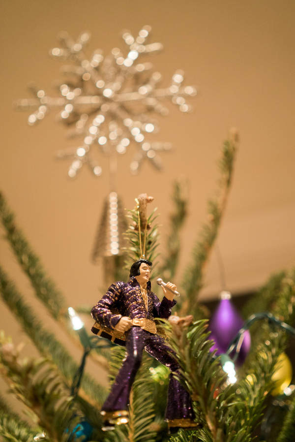 Elvis rocks the tree