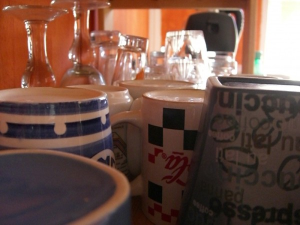 the glass (and cup) menagerie