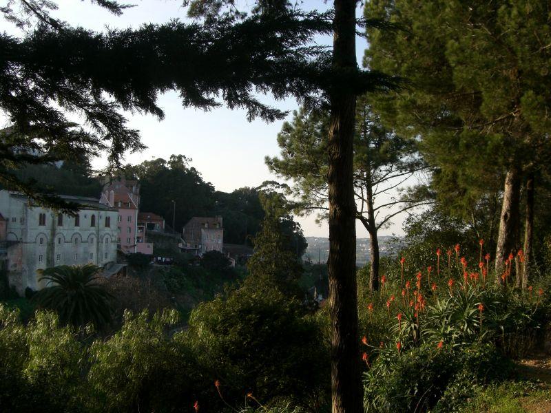 fairytale slope