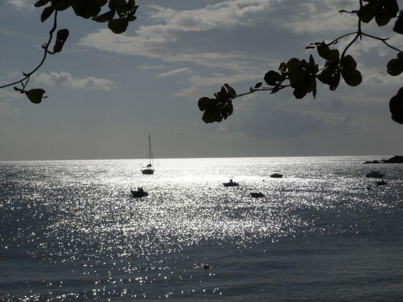 silver silver sea