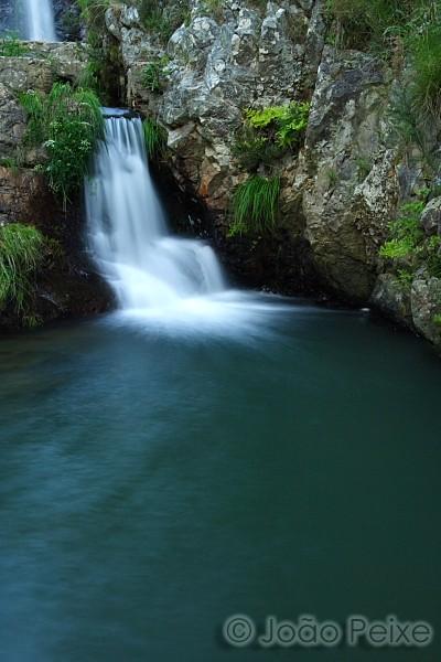 Cascata, água, floresta