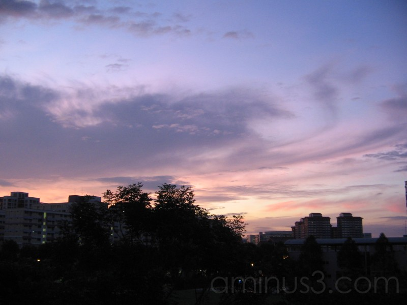 Sunrise out of my window...
