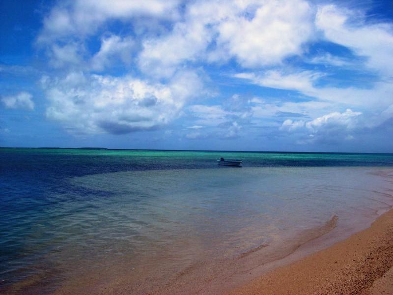 tropical beach tonga