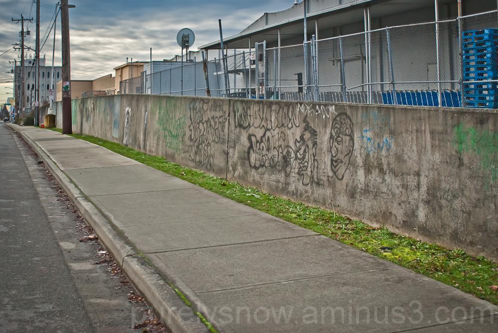 Seattle Side Street