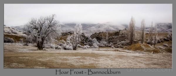 Bannockburn, Central Otago