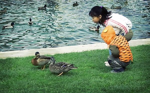 kids duck
