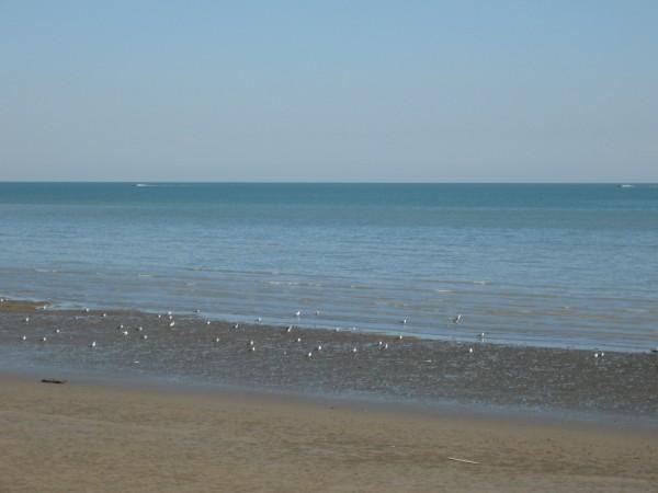 Persian Gulf 2
