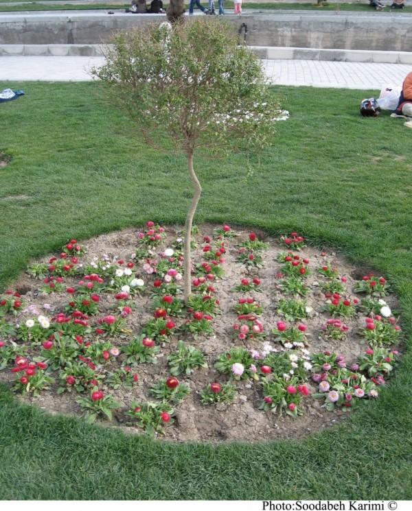 Round Little Garden(2)